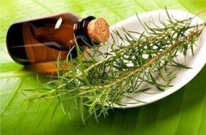 Использование масла чайного дерева